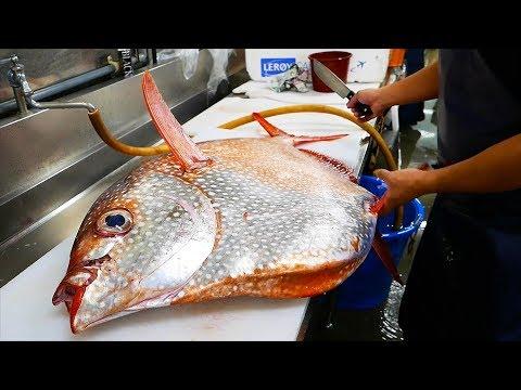 Nhật Bản thức ăn đường phố - Cá mặt trời khổng lồ Nhật Bản Hải sản - Thời lượng: 30:42.
