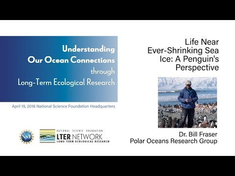 NSF-LTER 2018 Symposium - Bill Fraser: Life Near Ever-Shrinking Sea Ice, a Penguin's Perspective