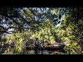 Brooker Creek John Chestnut Senior Park