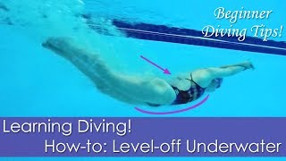 Beginner Learning Diving! How-to: Level-off Underwater