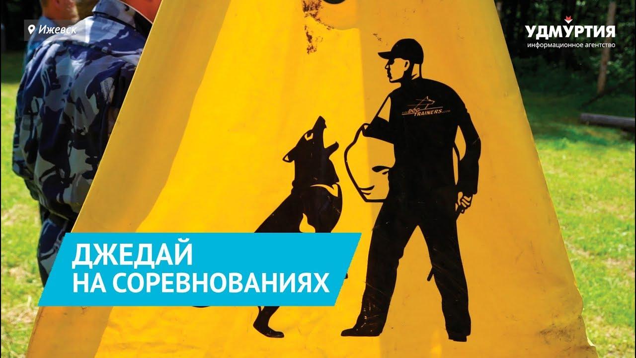 Лучшие кинологи УФСИН Удмуртии и их хвостатые «напарники»
