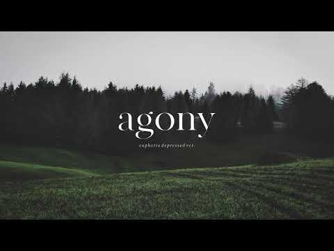 "BTS (방탄소년단) ""Agony (Euphoria Depressed Ver.)"" - Piano Cover - Thời lượng: 5 phút, 1 giây."