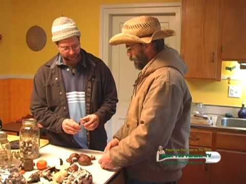 mushroom cultivation - Sharondale Farm, a permaculture project at the base of the central Virginias Southwest Mountains, integrates mushrooms, perennial plants, and animals into th...
