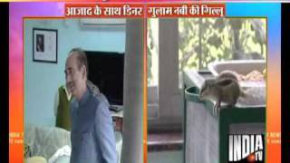 A Tiny Squirrel Is Ghulam Nabi Azad's Close Friend