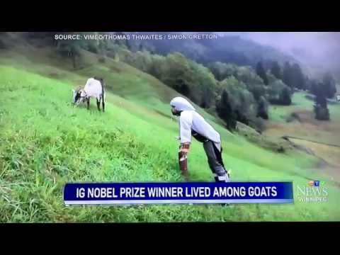 Winnipeg reporter loses it trying to describe a man living like a goat.