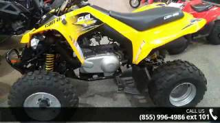10. 2017 Can-Am DS 250  - RideNow Powersports Goodyear - Good...