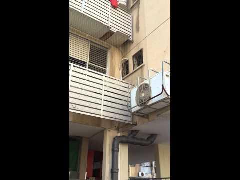 הרחקת יונים לבניין עם מסתורי גגון