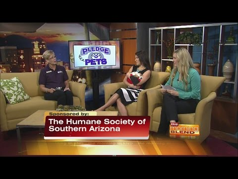 Humane Society Of Southern Arizona - Pledge For Pets Thursday Wrap Up