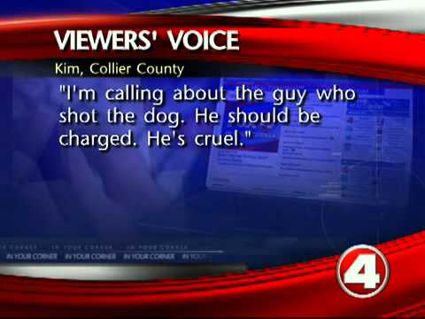 Viewers respond to dogs shot and killed in Tice