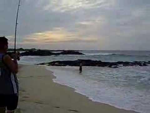 O'io/Bonefish at Secret Spot – Kona, Hawaii