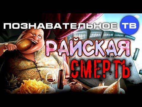 Райская смерть (Познавательное ТВ Михаил Величко) - DomaVideo.Ru