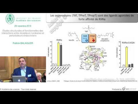 [Conférence] P. BALAGUER - Etudes structurales et fonctionnelles des interactions видео