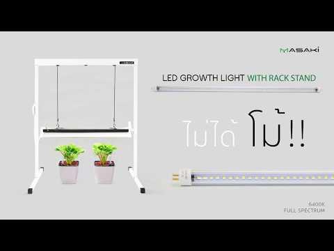 รีวิวการใช้หลอดไฟปลูกต้นไม้ LED T5 Masaki