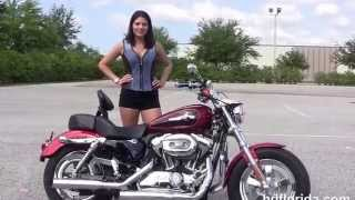 9. Used 2012 Harley Davidson Sportster 1200 Custom Motorcycles for sale