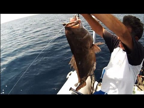JIGGING 3 grouper snapper sotos fishing.wmv