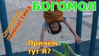 VLOG Спортивная Гимнастика и БОГОМОЛ