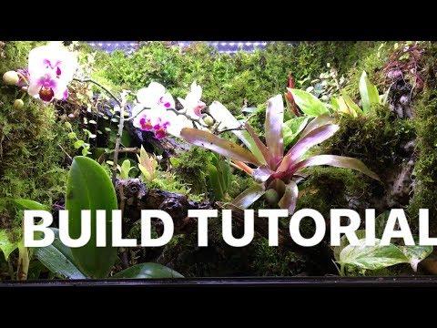 Dart Frog Terrarium Build Tutorial - Moss, Stream, Pond, Waterfall, Plants, False Bottom, Bioactive_Terrárium, Vivárium