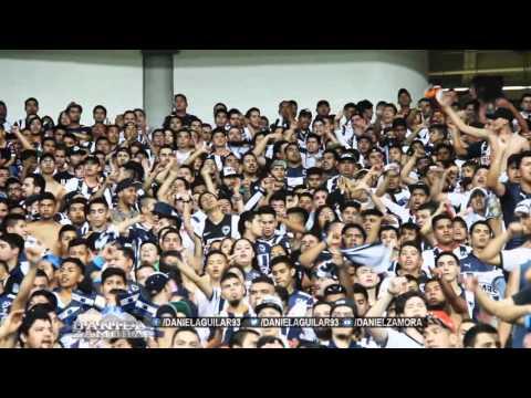 Rayados vs Veracruz, Nivel de cancha, Jornada 7 CL16 - La Adicción - Monterrey