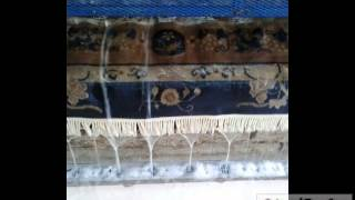 OrientalRugCare.Com, Watch a Professional Cleaner for Drying Oriental Rug in Jupiter