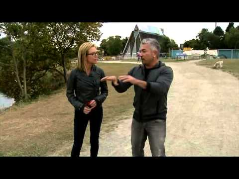 Jody Goes For A Dog Walk With Cesar Millan