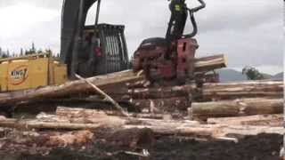 Southland New Zealand  city photo : Southland New Zealand logging movie