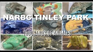 MASSIVE REPTILE EXPO | NARBC Tinley Park by Maddie Smith