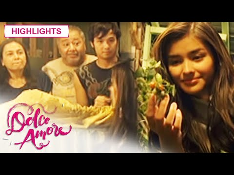 Dolce Amore: Meet the family