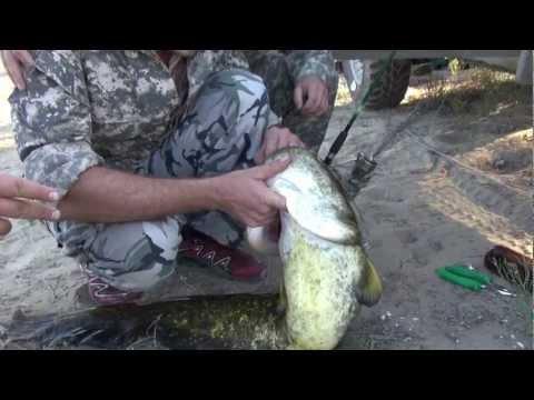 Топар алматинская область рыбалка