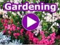 Download Lagu Japanese Garden Before & After   Lee's Oriental Landscape Art Mp3 Free