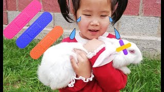 The Boo Boo Song (Animal Version) Nursery Rhymes & Children Songs