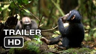 Nonton Chimpanzee Official Trailer  1  2012  Disney Nature Movie Hd Film Subtitle Indonesia Streaming Movie Download