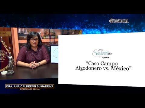 Programa 73 - Caso Campo Algodonero vs. México - Luces Cámara Derecho - EGACAL
