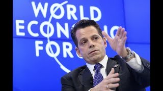 WASHINGTON — When Anthony Scaramucci, the new White House communications director, went on television on Thursday...
