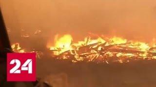 Сибирь горит: лесные пожары охватили уже 3 миллиона гектаров - Россия 24