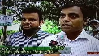 IFM FFS  Report,Mirpur,Kushtia.BTV
