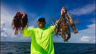 Video Lobster Tail and Lionfish Ceviche  {Catch Clean Cook} Gourmet Tasty Tuesday!!! MP3, 3GP, MP4, WEBM, AVI, FLV Agustus 2019
