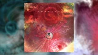 The Future That Awaited Me Animals as Leaders