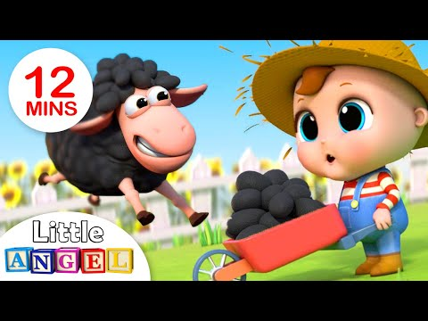 Baa Baa Black Sheep | Nursery Rhymes By Little Angel