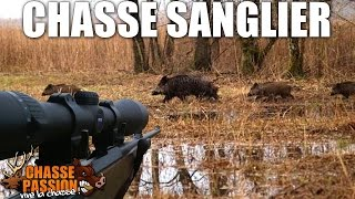 Chasse Sanglier - Grande Battues 2014