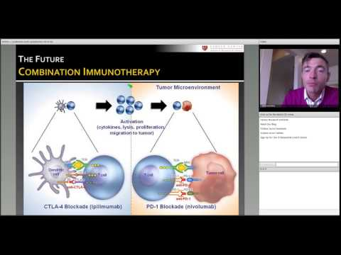 Breakthroughs in Cancer Immunotherapy Webinar: Dr. Holbrook Kohrt, Immunologic Strategies for Leukemia and Lymphoma