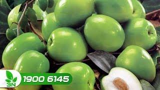 Trồng trọt | Khó hiểu khi cây táo ra nhiều hoa nhưng đậu ít quả?