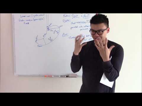 USMLE GIT 5: Stomach Anatomy, Physiology and Pharmacology!