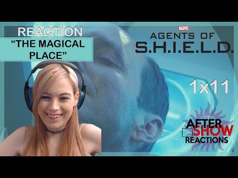 Marvels Agents Of SHIELD S01E11 - The Magical Place Reaction