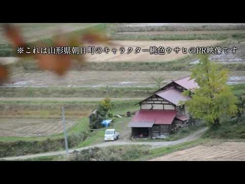 ゆるキャラグランプリ2013 山形県朝日町「桃色ウサヒ」PR …