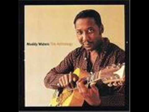 Muddy Waters - All Aboard