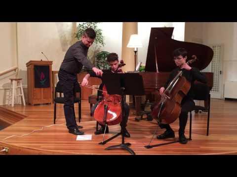 "12 Variations on ""Ah, vous dirai-je Maman!"" KV265 (Mozart/Dejardin)"