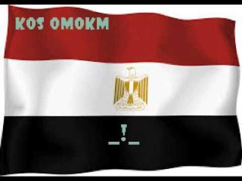 مص الكس - كس امكم مصريين منايك على زبي واحد واحد يا عيال الكلب.