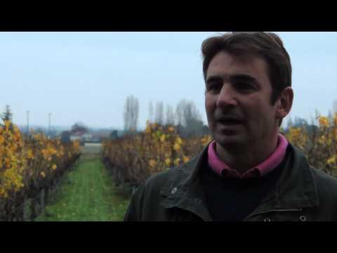 combiner performances économiques et environnementales en Midi-Pyrénées
