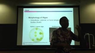 Dr. CY's Microbiology Chapter 12 Lecture Part 2-A