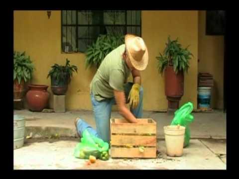 ¿Cómo hacer composta casera?